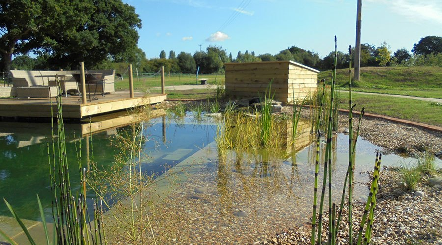 Natural Pond Build Wimborne