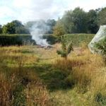 Clearing The Site - Whitmore Cottage